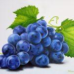 grappolo d'uva